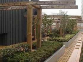 园林景观不锈钢花坛工程