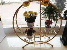 窗台圆形不锈钢多层花架