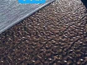 北京不锈钢水波纹板_厂家/价格